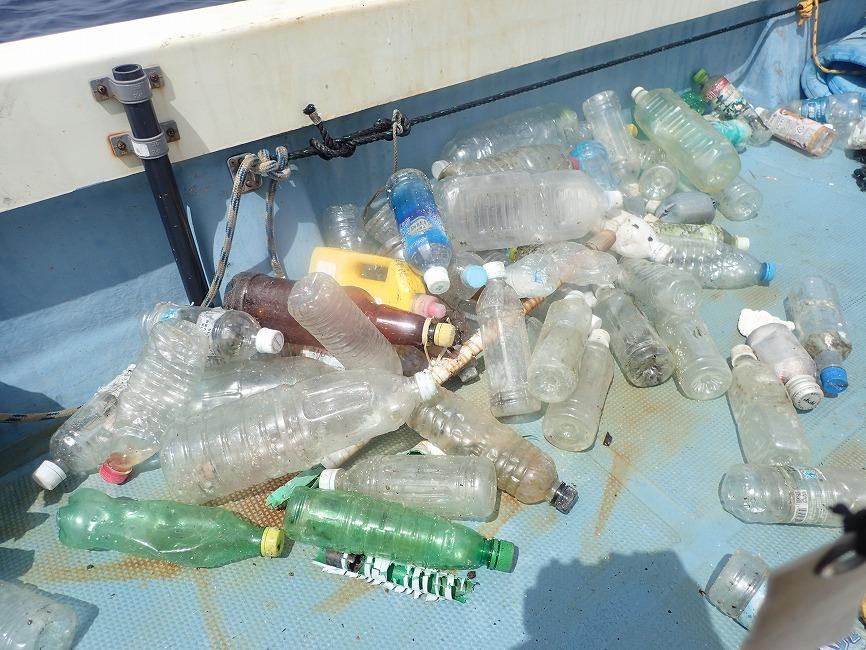 水中ゴミ拾い