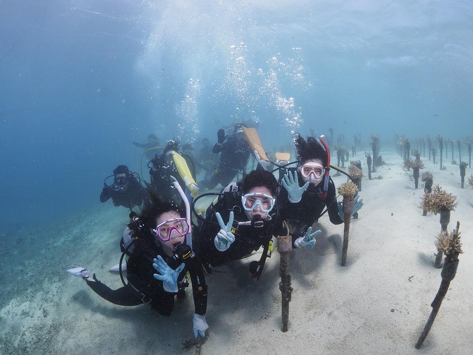 2019チーム美らサンゴ